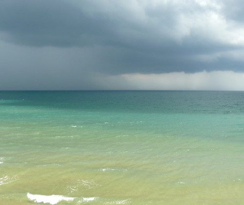 גשם בא, קו צאנג