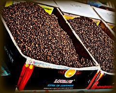 Extra Fin Gunpowder (blamstur) Tags: cruise vacation coffee market box morocco souk gunpowder taroudant coffeebeans