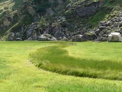 Prato (zobeide83) Tags: mountain green grass erba sentiero alto prato montagna trentino gmt adige pascolo