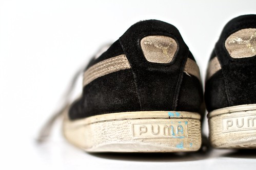 Pumas [257/365]