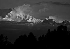 Mighty Kanchenjunga (Sougata2013) Tags: sky bw cloud india nature nikon himalaya mighty darjeeling westbengal nikoncoolpix kanchenjunga snowpeak himalayanrange kanchenjungarange mightykanchenjunga