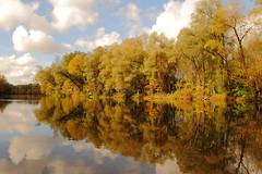 spring in mirror (Xtraphoto) Tags: trees water mirror spring wasser spiegel bume spiegelbild flus