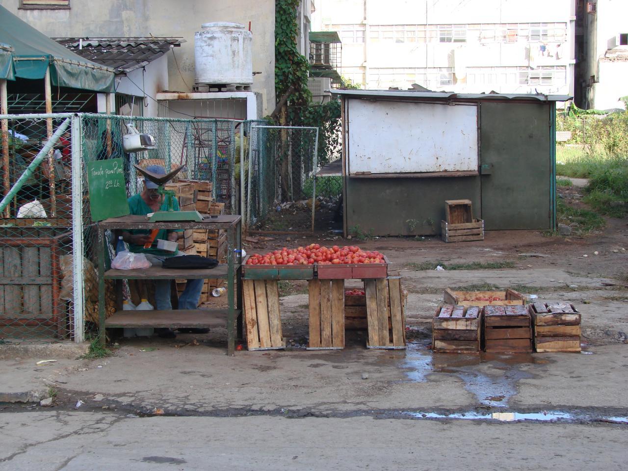 Cuba: fotos del acontecer diario - Página 6 3292966184_fe7b3eff51_o
