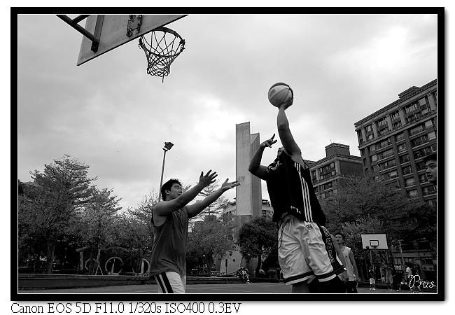 2009中和四號公園
