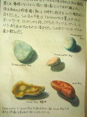Travel Journal - Beach pebbles (noriko.stardust) Tags: uk travel color colour art beach illustration pencil painting japanese pages drawing diary journal illustrations blogger pebbles crayon isle entry whight