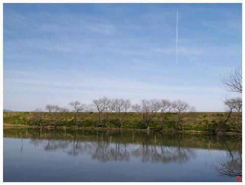 River 090228 #01
