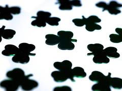 Depth of Shamrock (jciv) Tags: desktop wallpaper dof noflash confetti clover shamrocks shamrock file:name=dsc05953