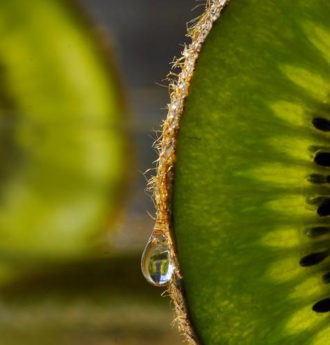 Kiwi Squeeze