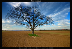 The Middle (George Goodnight) Tags: blue sky tree green nature field clouds landscape nikon sigma land jimmyeatworld acre sigma1020mm themiddle abigfave omot nikond40 artistictreasurechest themonalisasmile