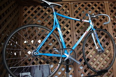(sgym_) Tags: fixedgear pist