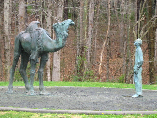 A statue of Knut Schmidt-Nielsen with a camel on the campus of Duke University.