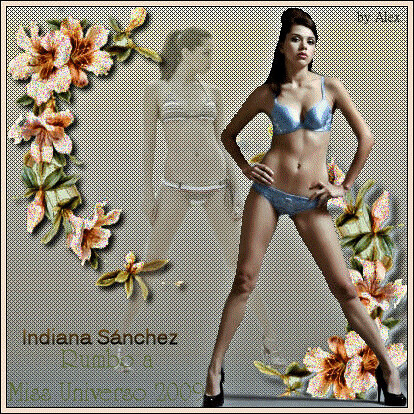 Indiana Sanchez banner