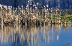 specchio..... (franco.photo) Tags: natura reflexions riflessi panorami valtiberina overtheexcellence