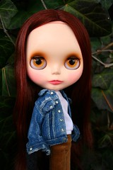 bella swan (cybermelli) Tags: new moon movie dawn monkey book eclipse carved swan eyes chat doll vampire cords pastel painted lips jacket stewart kristen ms denim blythe bella isabella merry custom hybrid takara skier lids cappuchino breaking eyelids sbl squeaky rbl squeakymonkey capcha eyechips blythestation lawdeda