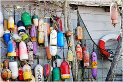 Cafe wall in Bolinas, CA (Little Italy Photography) Tags: california sea color net boats coast cafe fishing nikon cliffs bolinas faded bouy bohemian bouys pacificcoast lifesaver hwy1 californiahighway1 hiddentreasures nikond60 boatlifesaver scenictreasures nikon1855mmf3556gafsvrdxnikkor