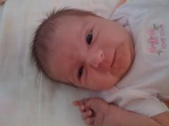 18 days old (leesepea) Tags: shozu sweetpea