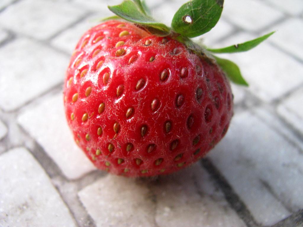 strawberry 1