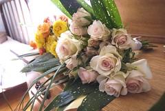 spray roses bouquet (PoPkO!) Tags: flowers roses handmade cello jelly ribbon jam occasion partyfavor popko handmadeweddingsonetsy