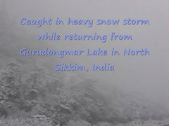 Caught in heavy snow storm - North Sikkim, India
