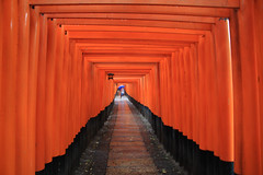 Fushimi Inari (dzpixel) Tags: world travel people japan canon tokyo nice kyoto nintendo osaka yokohama japon nihon dz 40d shibura kobé samlam dzpixel segq jqponqis