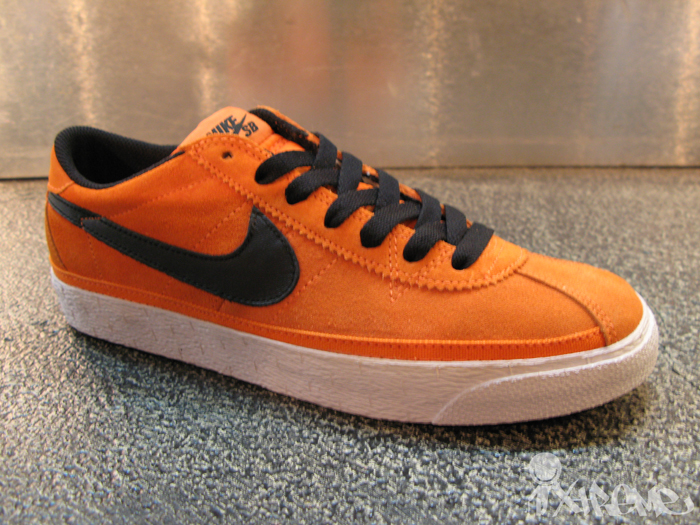 Nike SB May 2010 Shoes