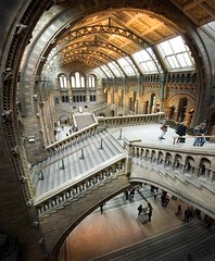Natural History Museum (gms) Tags: uk england london museum architecture stairs hall interesting wideangle staircase escher naturalhistorymuseum