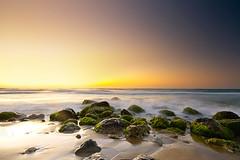 Golden shore (Jinna van Ringen) Tags: photography ringen elusive van jorinde jinna canoneos40d elusivephoto elusivephotography jorindevanringen jinnavanringen chanderjagernath jagernath jagernathhaarlem