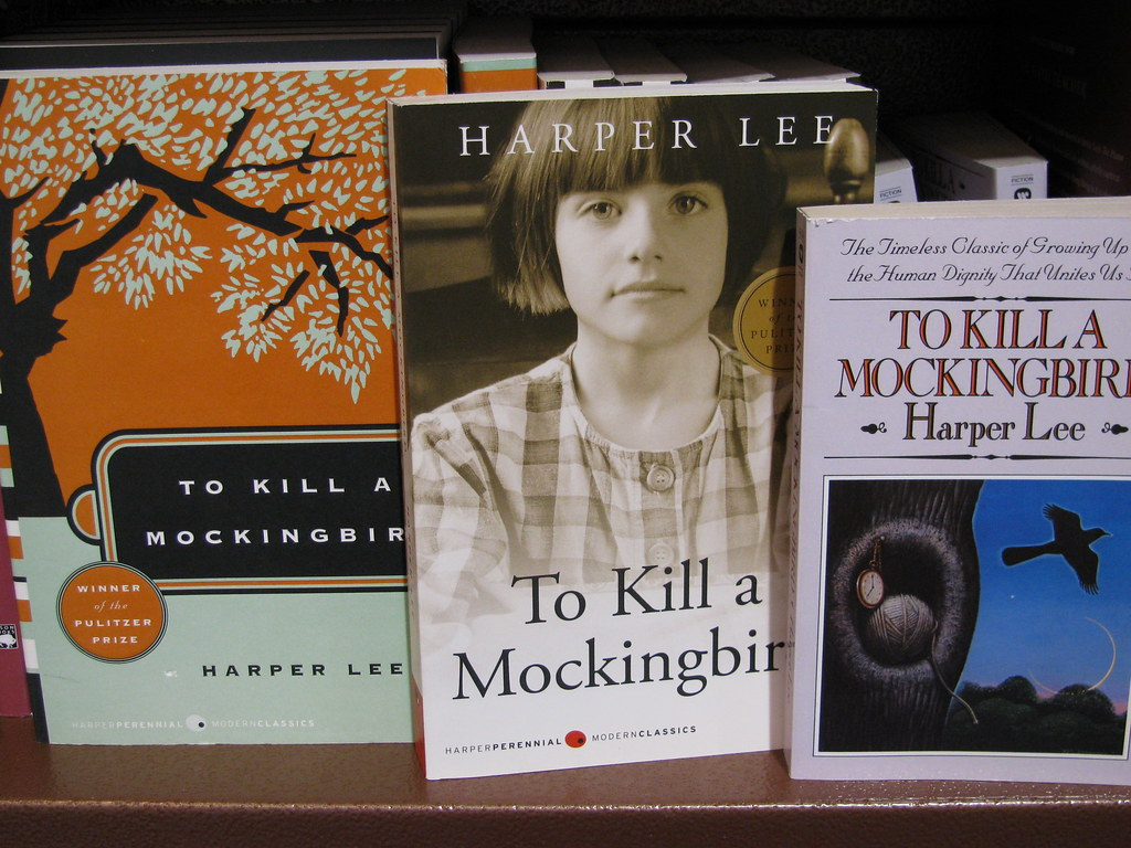 To Kill a Mockingbird Chapters 18-20