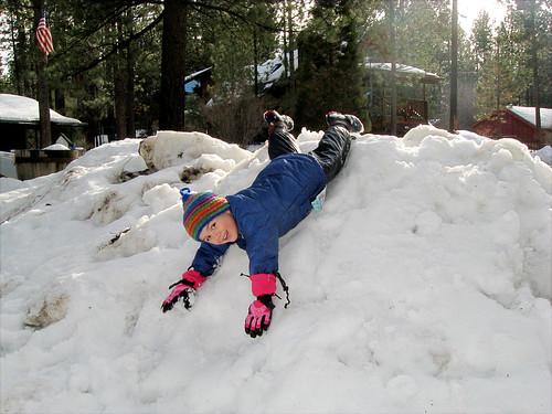 who needs a sled?