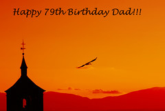 For My Dad :-)))) (Eve Livesey) Tags: birthday nikon dad photoshopped stork avila aspecialday d80 evelivesey sendingsunshine hesaysonebroughtme 79today