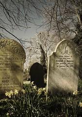 L1010515 St Peters & Pauls no 4 (SaltydogJacko) Tags: 3 graveyard norfolk digilux burgh castlechurch
