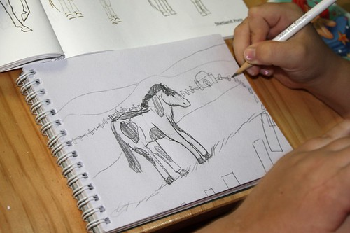 sketching horse