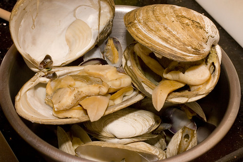 Mixed, Steamed Clams