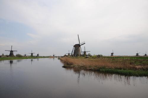 河沿いの風車群