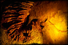 Birth of a Stalagtite (Loralei1) Tags: abstract skyline gold amber stalagtite caverns