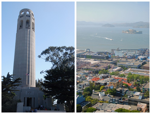 coit collage