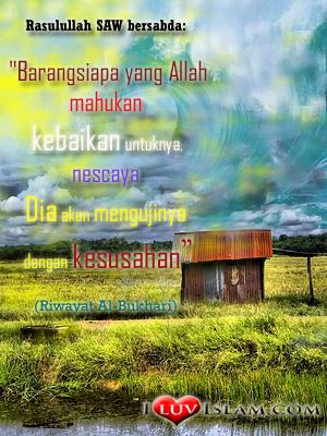 tarbiyah dari ALLAH itu indah!
