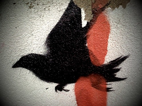 graffiti - silhouette of crow flying