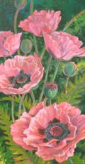 "NEW ""Poppies - pink June"" (POYNTER STUDIO) Tags: pink original flower floral painting acrylic poppy poppies poynter"