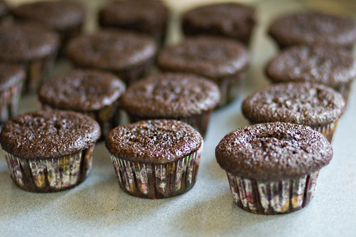 and dip the top of each one in the ganache. When I was done, I ...