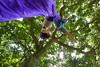 How to be beautiful (Eli Juicy Jones) Tags: seattle park summer people jasonwebley 2009 wallingford lunge camptomato juicyjones meridianpark tomatoscouts lx3 slightlynorth