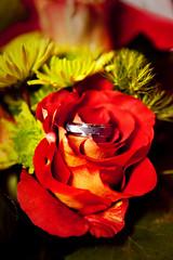His Ring (Bill Dempsey) Tags: wedding wv elkins 5dmkii