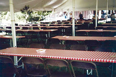 Company Picnic using plastic elastic table covers