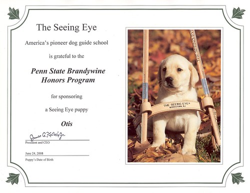 The Seeing Eye Certificate