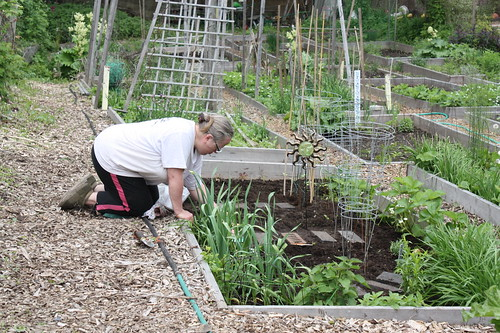 Asbridges Eco Community Garden