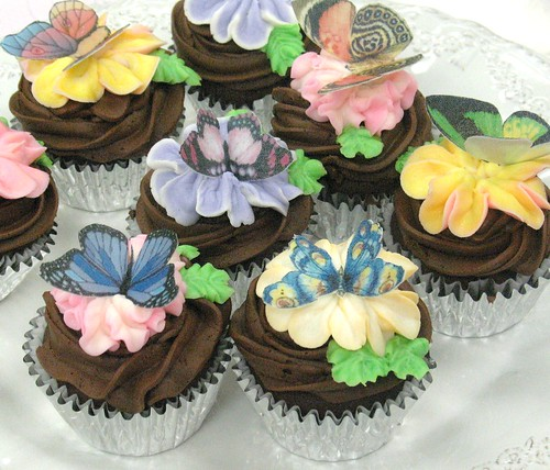 [Image from Flickr]:Butterfly Chocolate cupcakes $42/dz