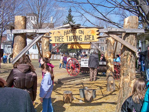 Image result for pa maple festival