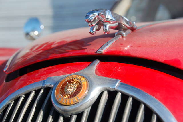 Red Jaguar Mark 1 Chrome quotpouncing Jaguarquot statuette on front of the hood plus badge on hood by Chris Devers