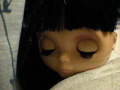 93/365 - sleepy lily