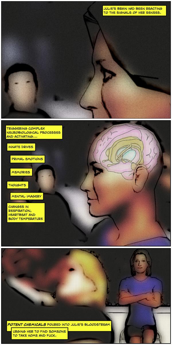 Primate Brain 02